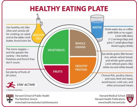 Esquema de dieta saludable elaborado por Harvard