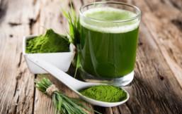 cebada verde en polvo