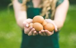 etiquetando los huevos