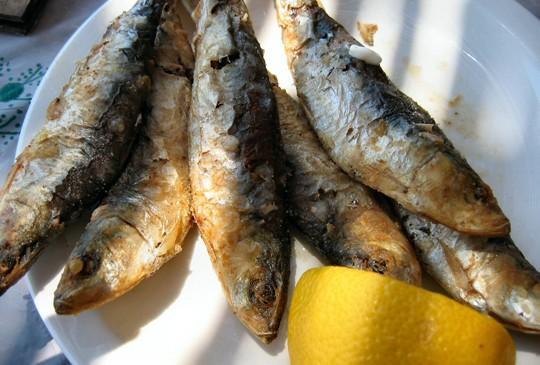 Las sardinas, fuente de omega-3
